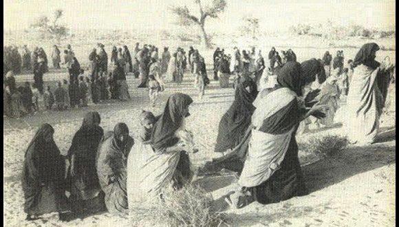 بعد ثلاثة وأربعين عاما من الغزو العسكري المغربي للصحراء الغربية : الشعب الصحراوي يزداد وحدة وإجماعاً، تحت قيادة ممثله الشرعي والوحيد، الجبهة الشعبية لتحرير الساقية الحمراء ووادي الذهب (بيان)