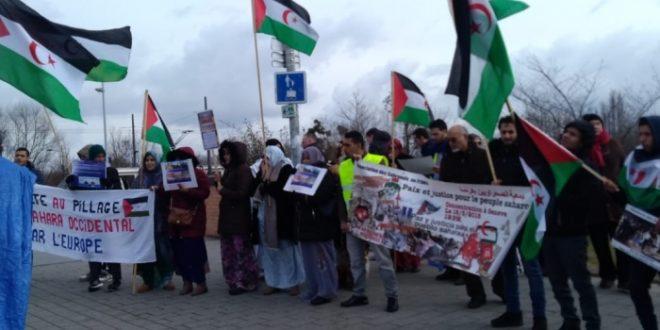 متظاهرون صحراويون يطالبون البرلمان الأوروبي بتصحيح أخطاء المفوضية الأوروبية في حق الشعب الصحراوي