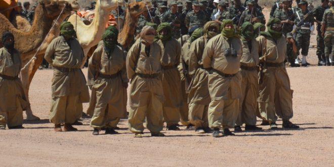 الشعب الصحراوي يحتفل بالذكرى السادسة والأربعين لاندلاع الكفاح المسلح