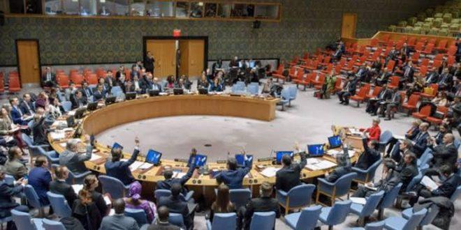 كينيا تنتصر على جيبوتي في معركة الحصول على مقعد في مجلس الأمن الدولي لعامي 2022/2021