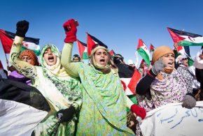 لجنة الدفاع عن حق تقرير مصير شعب الصحراء الغربية تندد بالإهمال الطبي المتعمد في حق المدنيين الصحراويين بالمناطق المحتلة