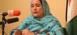 مريم السالك احمادة ضيفة الجريدة الإخبارية
