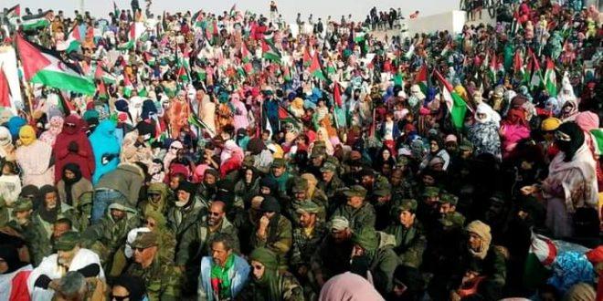 ولايات الجمهورية تخص ابطال جيش التحرير باستقبال خاص